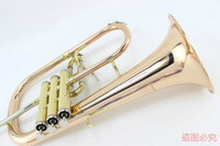Bb Flugelhorn Gold Phosphorus & Copper with Case Mouthpiece Trumpets Flugelhorn Musical Instruments