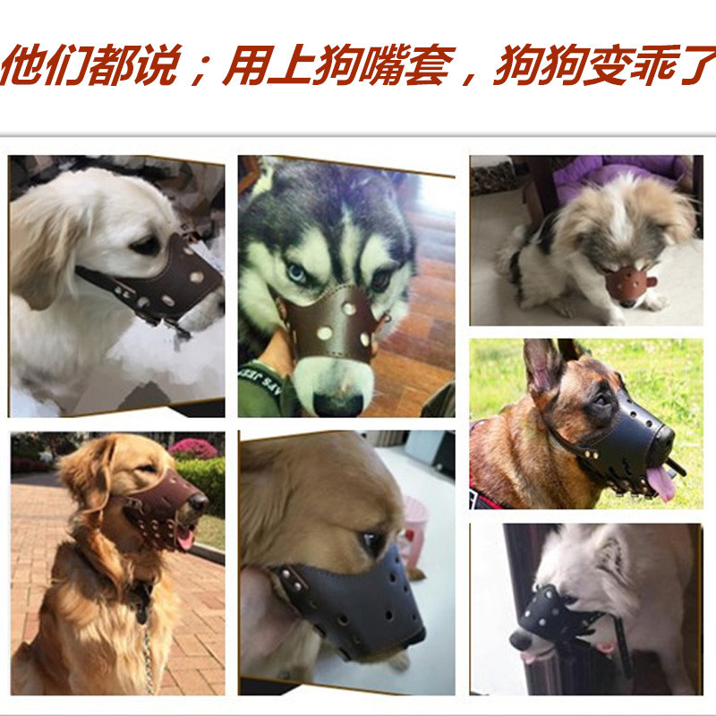 Dog Mouth Sleeve Anti-Bite Called Face Mask ~~~ In Large ~~~ Dog Zhi Fei Qi Golden Retriever ~~~ The Anti-Eat Pet ~~~ Mouth