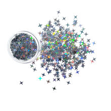 Gold/Silver Star Sequin Holographic Nail Glitter Laser Flakes Sequin 3D DIY Nail Art Decorations
