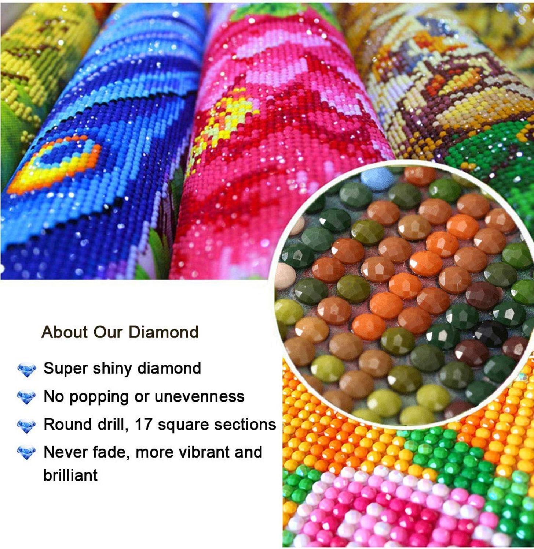 40 * 50 DUQA Kits de pintura de diamante DIY 5D Kits de pintura de diamante de taladro completo para adultos Kits de pintura de gato negro por n/úmeros Kits para adultos Ni/ños 3284
