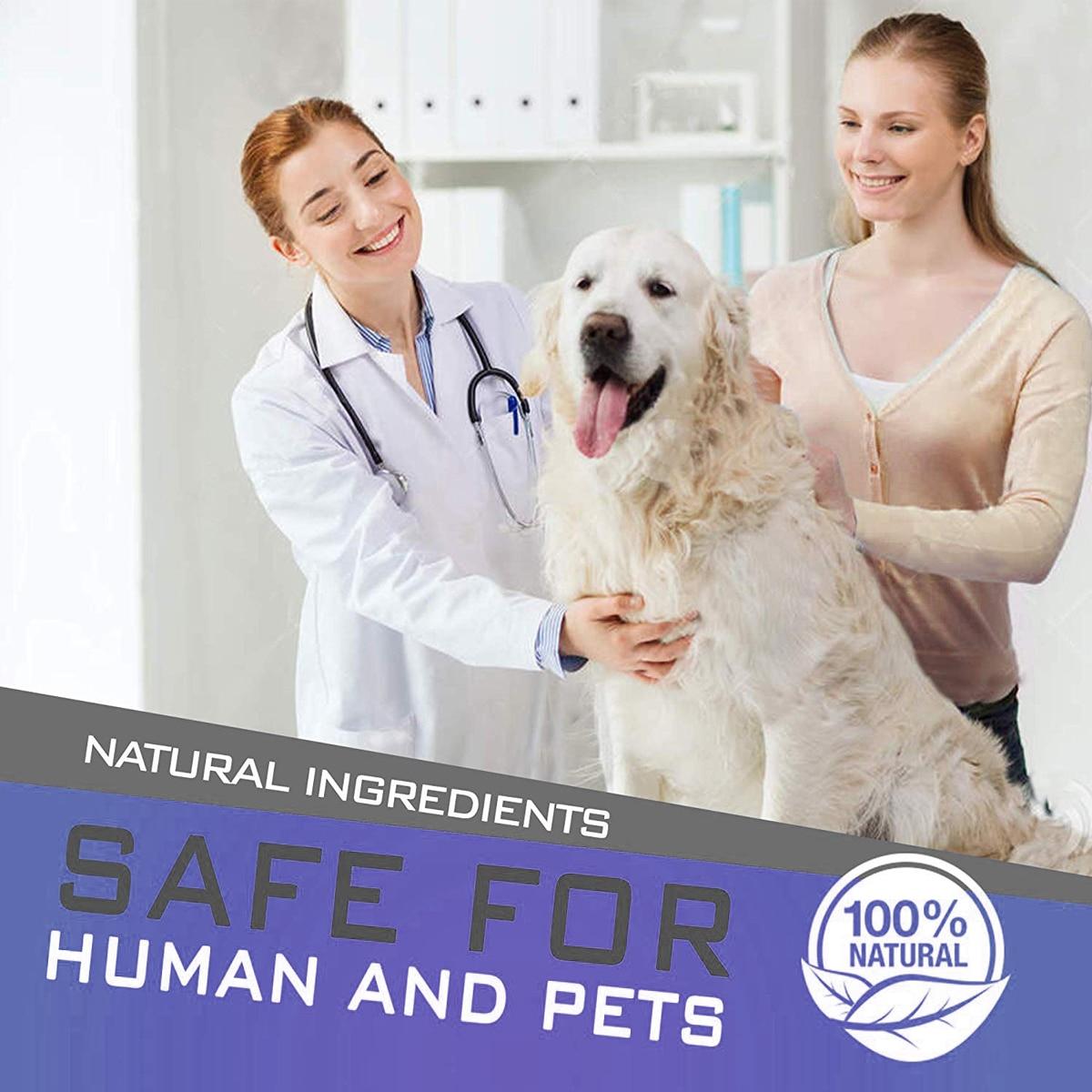 Dewel Anti Flea Ticks Insect Mosquitoes 8 Months Protection Waterproof Long Lasting Dog Collar Custom Puppy Cat Pet Collars