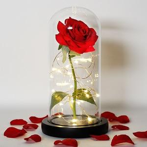 Image 3 - Piękna i bestia róża róża w szklanej kopule LED wieczna róża czerwona róża walentynki dzień matki specjalny romantyczny prezent