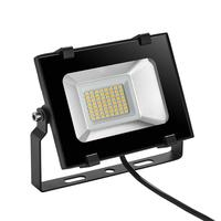 5th Generation Conventional Flood Light 30W 120 Degrees Beam Angle P65 Waterproof Flexible Installation for Outdoor
