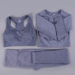 Conjunto deportivo sin costuras para mujer, ropa deportiva para Fitness, paño de gimnasio, camisas de manga larga, Leggings de cintura alta para hacer ejercicio