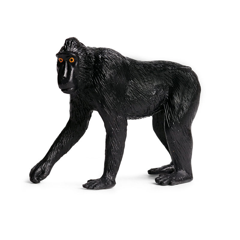 Simulation Macaca Nigra Animal Figure Collectible Toys Wild Animal Cognition Action Figures Kids Solid Plastic Cement Toys