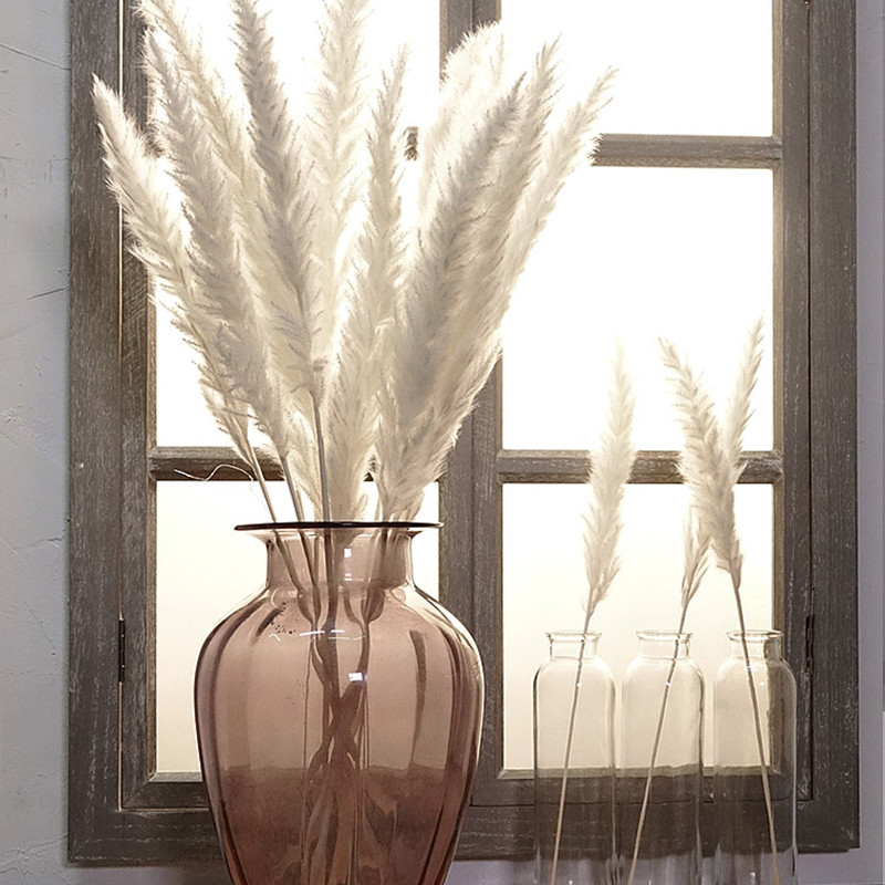 7PCs Bulrush Natural Dried Flowers Small Pampas Grass Phragmites DIY Artificial Flowers Plants For Decor Home Wedding Decoration(China)