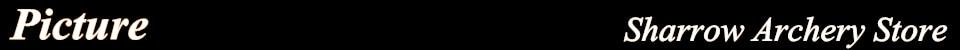 12 pçs led luminoso flecha de tiro