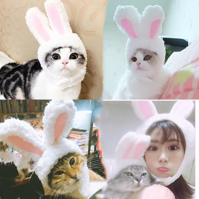 Cute Pet Dog Cats Hat Cap Rabbit Fashion Hat For Cat Dogs Casual Canvas Cap For Dog Kitty Hat Chihuahua Pet Products 30