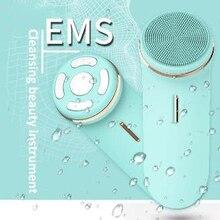 Очищающий косметический инструмент для лица EMS Многофункциональный Электрический силиконовый звук волна пример импортный