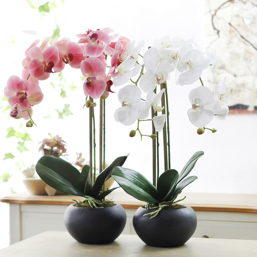 65cm High-end Flower Vase With Free Shipping