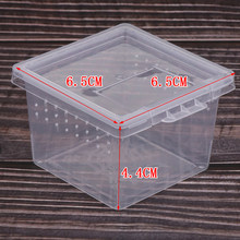 Caixa de criação do vivarium do recipiente de alimentação do réptil de blesiya 10x para o levantamento da saída