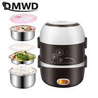 DMWD électrique Mini cuiseur à riz 2/3 couches en acier inoxydable revêtement portable oeuf chaudière vapeur chauffe-plats boîte à déjeuner multicuiseur 2L