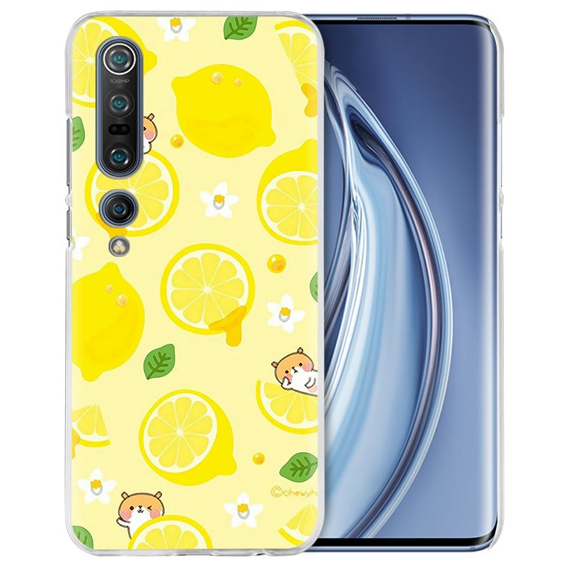 Summer Fruit Orange Case For Xiaomi Mi Note 10 Pro 9T 9 CC9 A3 A2 8 Lite 6X 10Youth 5G Poco X2 F1 F2pro Hard Coque Fall