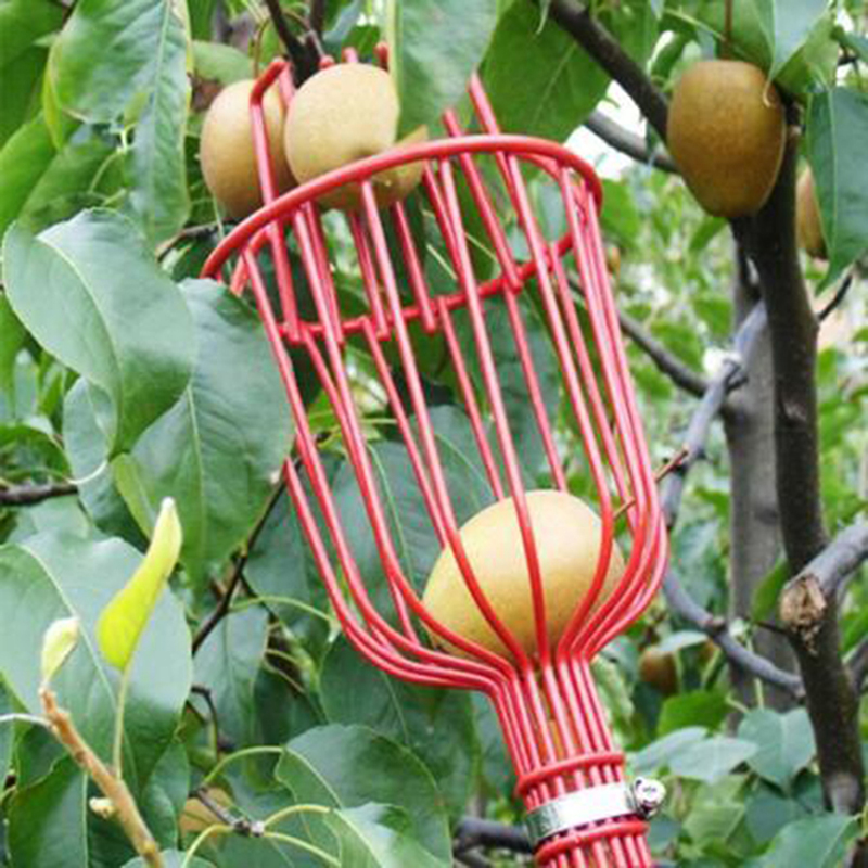 Aluminum Deep Basket Fruit Picker Head Convenient Fruit Picker Catcher Apple Peach Picking Garden Tools