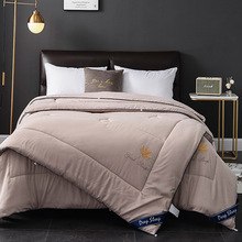 Modern Fashion Quilt Washed cotton Ribbon sports coltsfoot quilts spring and autumn quilts warm quilt core quilt textile modern baby quilts