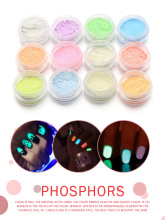 12Pcs Nail Art Glow in the Dark Powder Fluorescent Pigment Glow-in-the-Dark (Phosphorescent Powder)