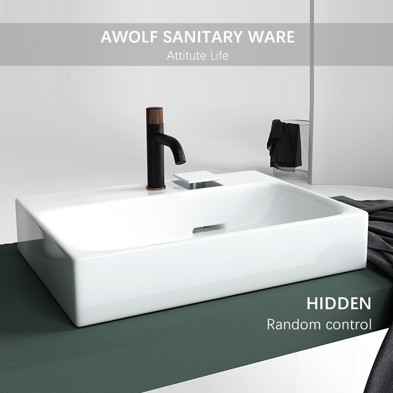 Modern Bathroom Sinks Matte Black White