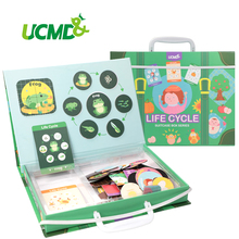 цена на Magnetic Animal Life Cycle Frog Fridge Magnets Growth Puzzle Jigsaw Learning Biology Educational Stickers Writing Toys Kids Gift