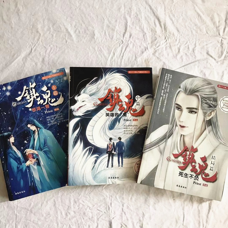 3 Books/Set Zhen Hun Guardian Chinese Fantasy Novel Book by Priest Fiction Book image