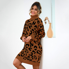 Thick Long Knit Sweater Women Autumn Pullover 2019 Dress New Loose Leopard Elegant Casual Turtleneck