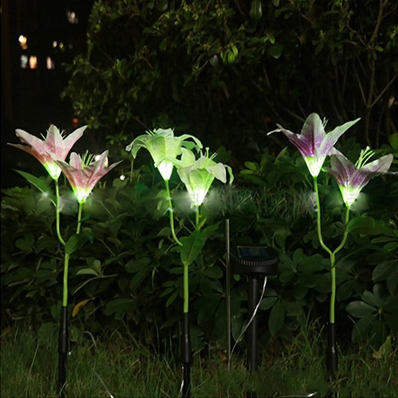 luz solar do jardim flor gramado luz 02