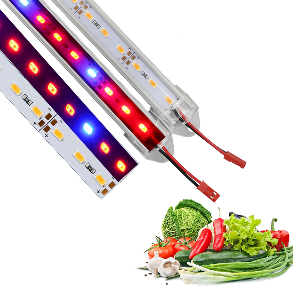 Phyto Gladiolus Fitolampy Phytolamps Plant Lamps 50cm Led Grow Light Full Spectrum Growing Light For Plants Flowering