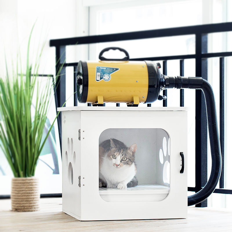 Pet oven, dog hair dryer, bath, artifact, hair, cat, small dog, home water dryer.