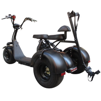 City Escooter 3Wheel Golf Cart EEC COC Approved Electric Cargo Tricycle Citycoco Golf Bag Cart Trike Motorcycle Electric Scooter 1
