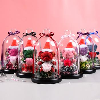 Boże narodzenie miś róża wieczna mech trawa kopuła strona główna dekoracje ślubne urodziny święto dziękczynienia prezenty walentynkowe matki tanie i dobre opinie CN (pochodzenie) XX003 Suszone kwiaty Płatki Walentynki Wikliny dried flowers Valentine