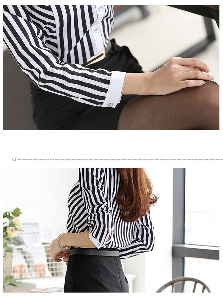 Elegant Striped Lace Long Sleeve Embroidery Office Blouse Shirt 2