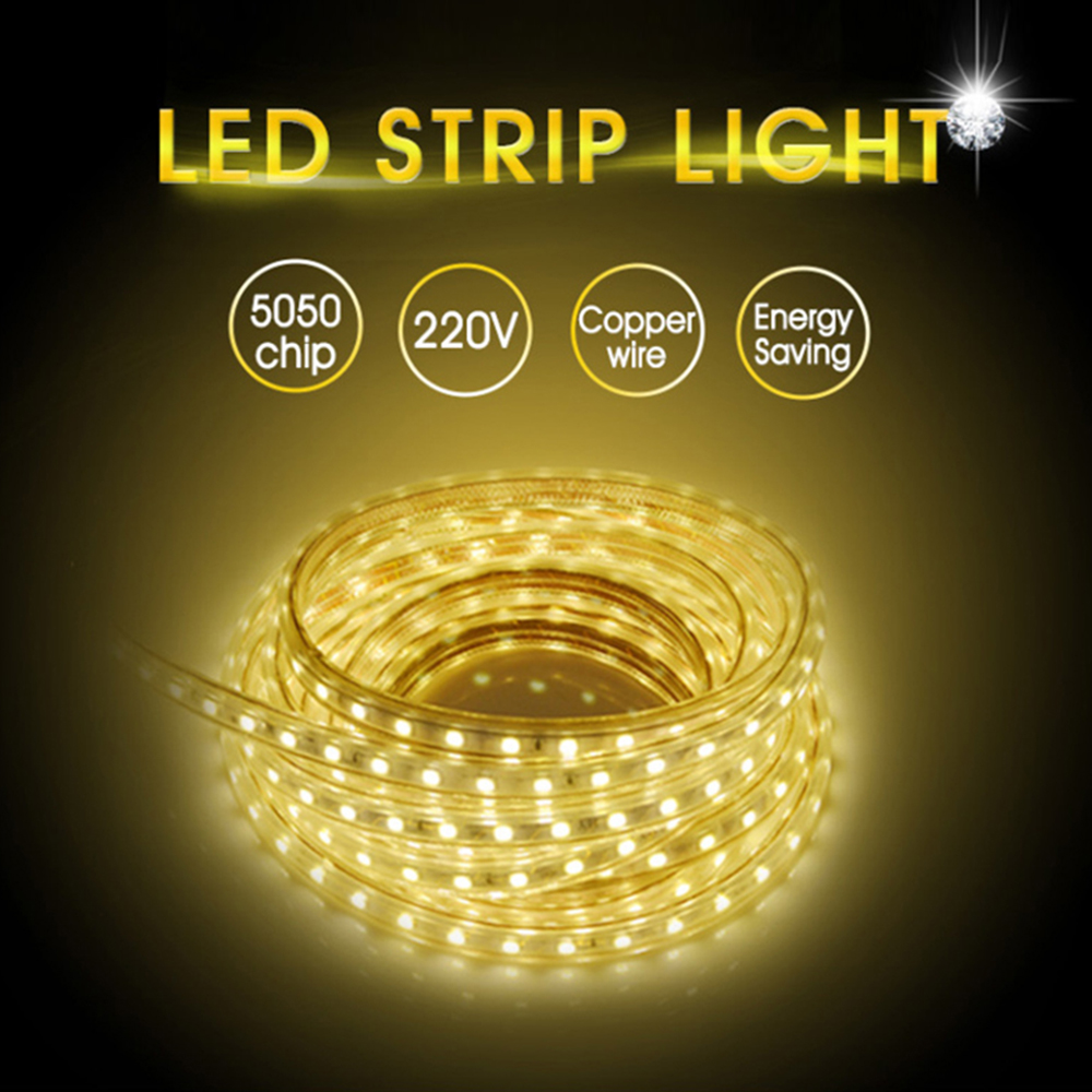 5050 AC220V LED Strip Flexible Light 60leds/m Waterproof Outdoor LED Light Tape With Power Plug 1M/2M/3M/5M/6M/10M/15M/20M