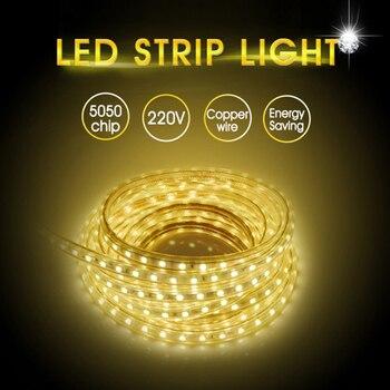 5050 AC220V tira de iluminación LED Flexible 60leds/m a prueba de agua al aire libre cinta de luz LED con enchufe de alimentación de 1M/2M/3M/5M/6M/10M/15M/20M