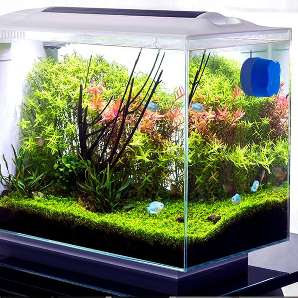 Aquarium Magnetic Brush Glass Floating Algae Scraper Curve Glass Cleaner  Mini Scrubber Tool Fish Tank Glass Cleaning Magnet - Super Discount #430D |  Cicig