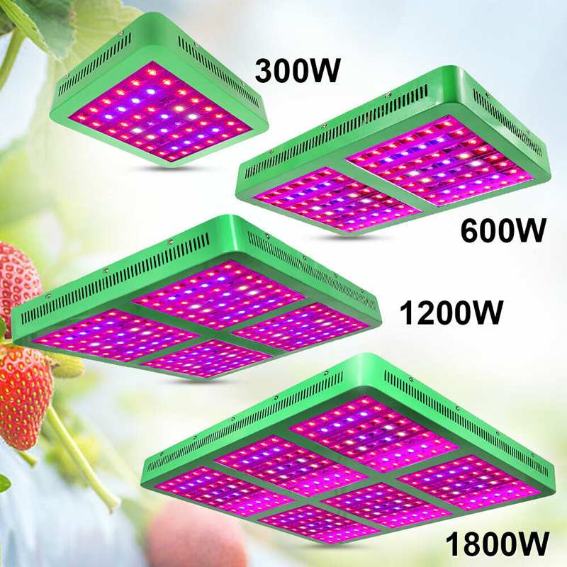 LVJING LED Grow Light Elite 300W 600W 1200W 1800W Full Spectrum Lamp For Plants Indoor Greenhouse Tent Reflector Double Switches