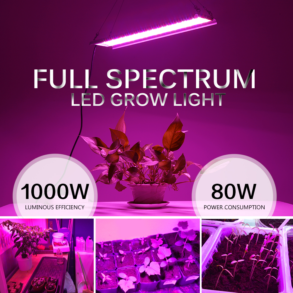 Image 2 - Phyto Lamp 80W LED Plant Grow Lights AC85 265V Full Spectrum High Luminous Efficiency Growing Lamps for Indoor Greenhouse Plants-in Power Cords & Extension Cords from Home Improvement