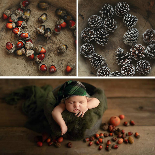 Photography Props Christmas Pine Cones And Artificial Nuts New Year Theme Shoot Photo Studio New Accessories 10 Pcs