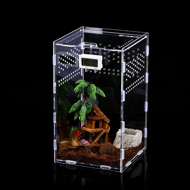 Reptile & Insect Breeding Box For Spiders Scorpions Crickets And Small Snakes. 2