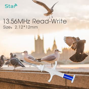 1pc 13.56MHz animal microchip syringe NFC chips 2*12mm HF smart microchips with needle NTAG216 rfid injector set - discount item  15% OFF IoT Devices