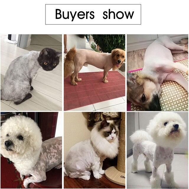Dog Grooming Tool Set  5