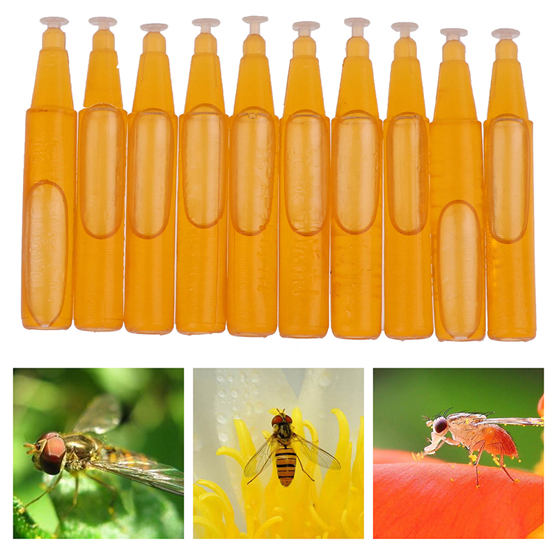 10Pcs/Bag Fruit Fly Attractant 2ml Trap Bait Beekeeping Beehive Tool Killer Swarm