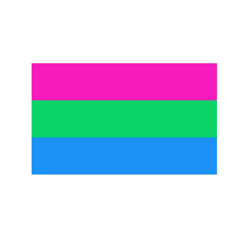 johnin hanging 90*150cm LGBTQIA Polysexual Pride Flag for Decoration