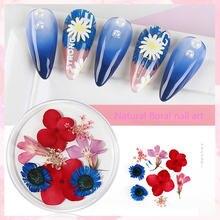 1 коробка украшения для ногтей высушенные цветы натуральный
