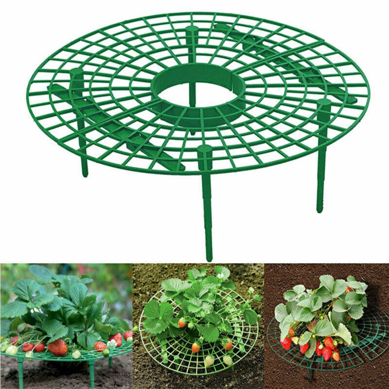 Strawberry Stand Frame Holder Planting Rack Fruit Growing Support Plant Climbing Vine Prop Flower Pillar Bracket Gardening Stand