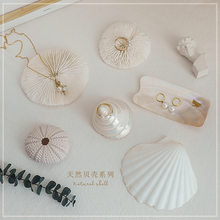 Shell decoration photography accessories photography Retro Props Birthday Party decorations props