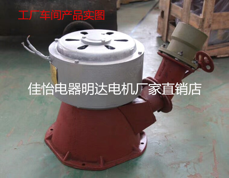 All copper 220V 1000W hydraulic small permanent magnet brushless alternator ramp-style home