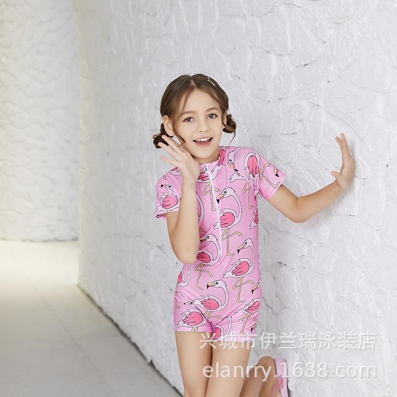 2019 New Style One-piece Swimsuit For Children Women's Cartoon Flamingo Girls INS Short Sleeve Boxer Hot Springs CHILDREN'S Swim