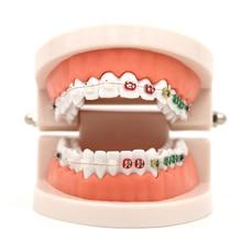 1 шт. Стоматологическая Ортодонтическая модель лечения с Орто-металлическим керамическим кронштейном Arch Wire Buccal Tube Ligature Ties стоматологические инструменты