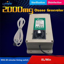 2000mg/h Ozone Generator Machine With 60 Minutes Timer For Fruits Vegetables Meat Food Water Air Sterilizer Purifier Treatment