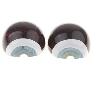 Image 4 - 6 parts Enlarged 3X  eye Anatomy Model Human Eye Ball Model Medical Anatomical eyes Teaching Experimental Model