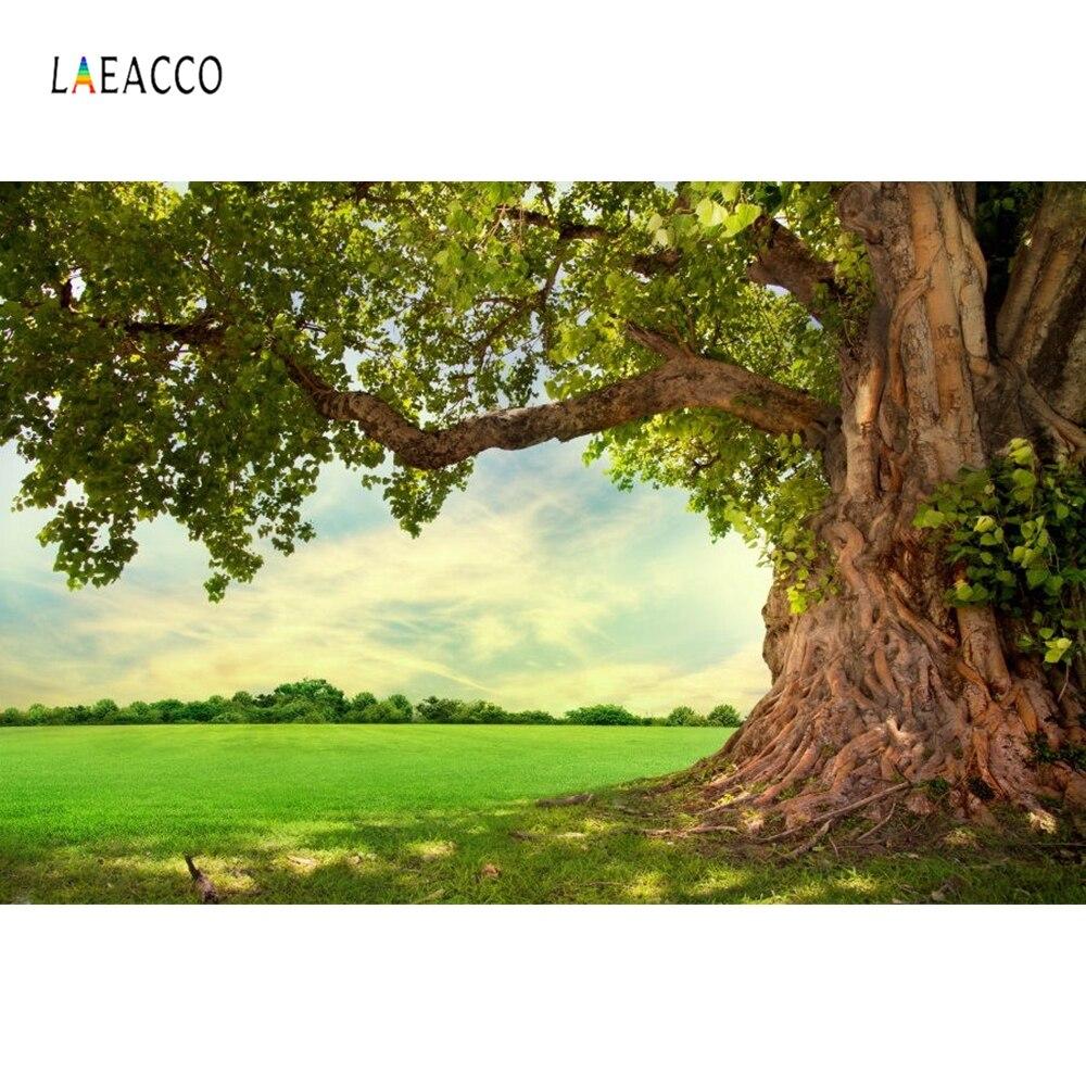 Us 367 8 Offlaeacco Musim Semi Rumput Pedesaan Tua Pemandangan Pohon Fotografi Latar Belakang Vinyl Kustom Fotografi Latar Belakang Untuk Foto